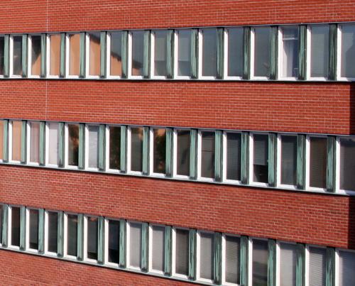 Vem vill putsa fönster?