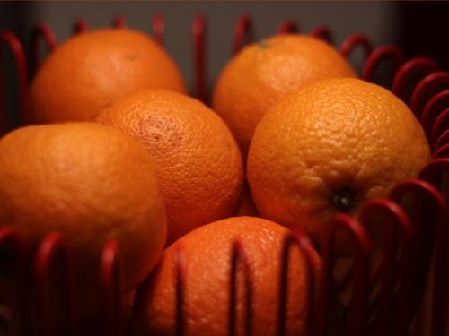 365 Foto - 5 Apelsin