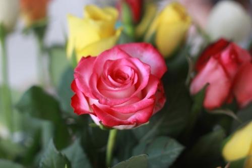 22. Blommor